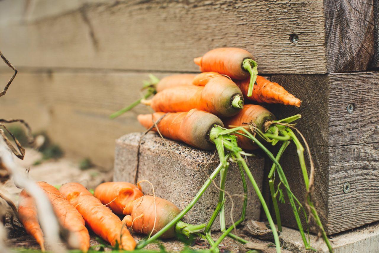 yuka-eco-score-agroalimentaire
